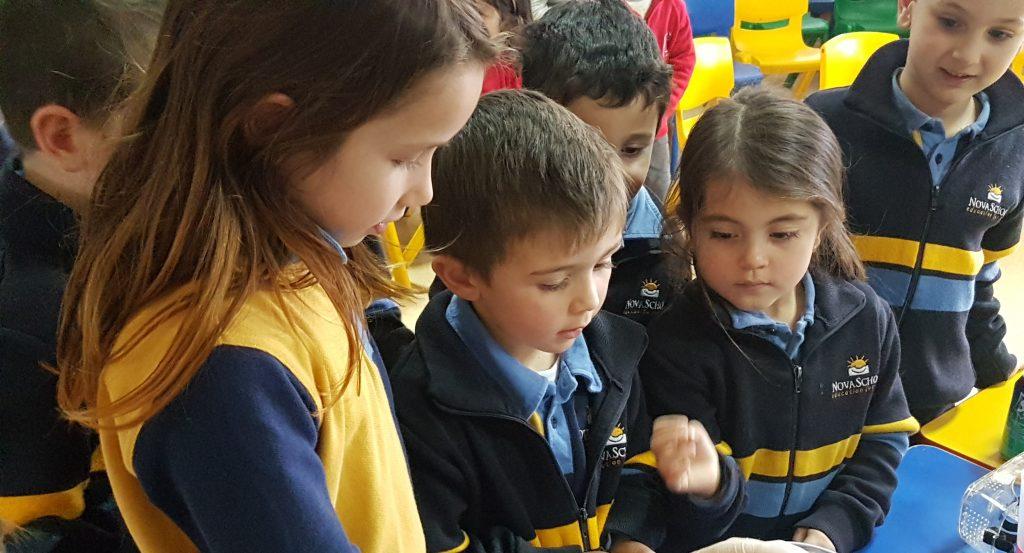 Segundo Ciclo de Infantil en el colegio privado Novaschool Medina Elvira